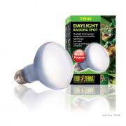 Lampe Exo Terra daylight basking spot 75w