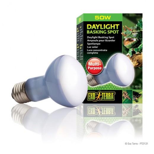 Lampe Exo Terra daylight basking spot 50w