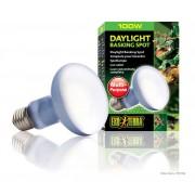 Lampe Exo Terra daylight basking spot 100w